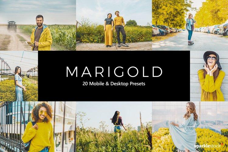 20 Marigold Lightroom Presets & LUTs example image 1