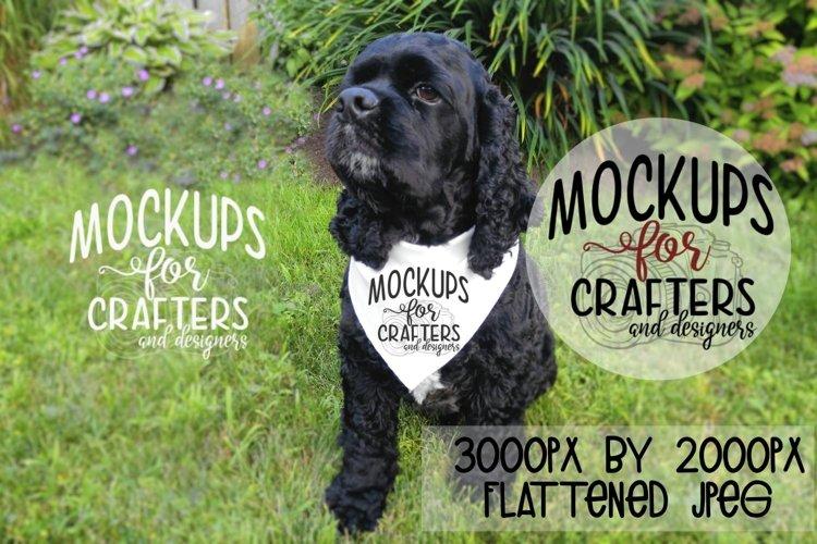 MOCK-UP - Pet Bandana, Dog Bandana, White