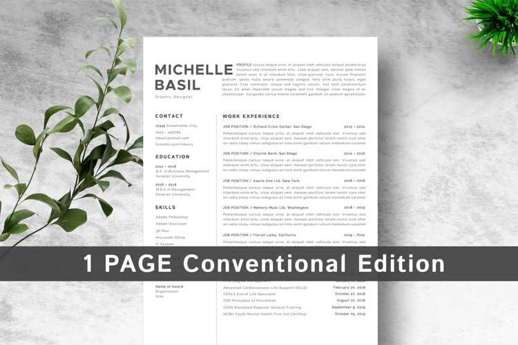1 Page Resume Template Conventional Edition example image 1