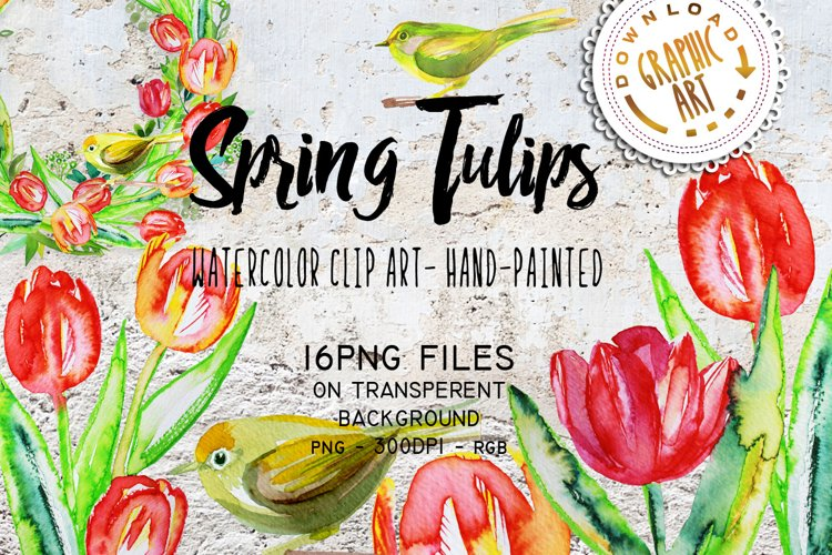Spring Tulips clipart example image 1