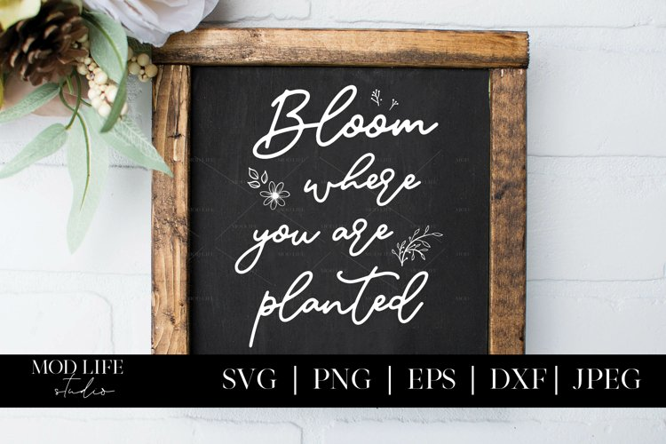 Bloom Where You Are Planted SVG Cut File - SVG PNG JPEG example image 1