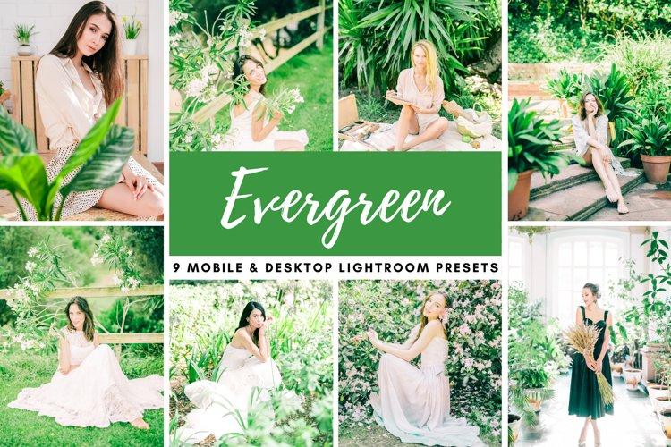 Evergreen Green Mobile & Desktop Lightroom Photo Presets