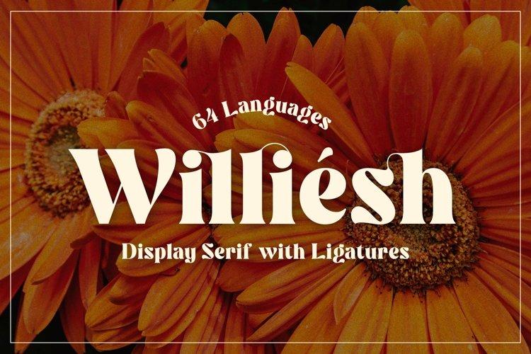 Williesh example image 1