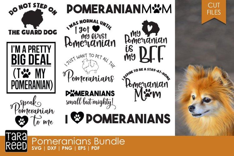Pomeranian Bundle example image 1
