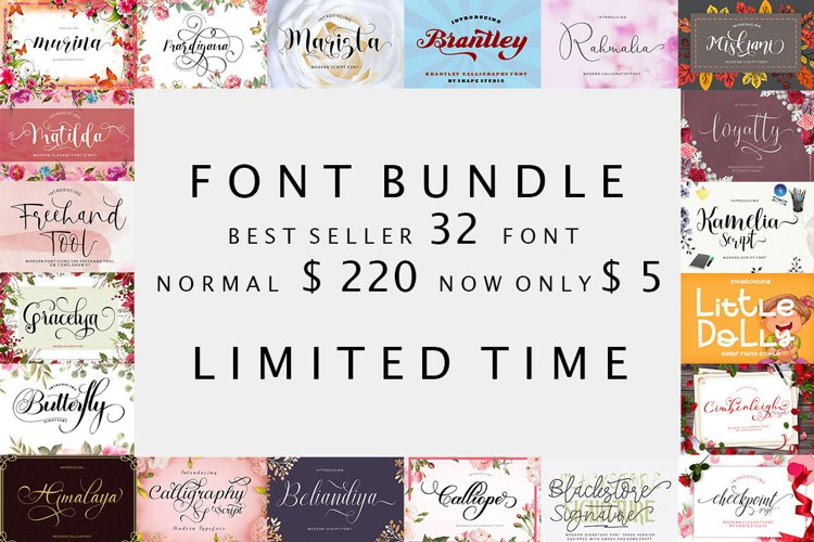 Font Bundle Only $ 5 example image 1