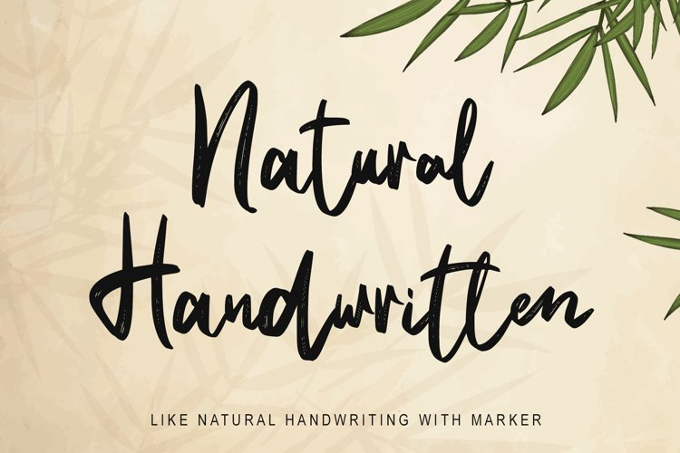 Natural Handwritten example image 1