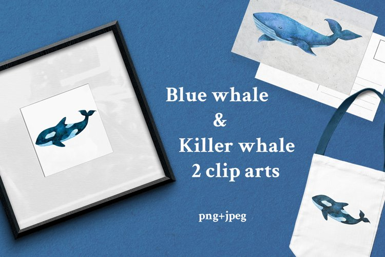 Watercolor blue whale and killer whale clipart. Ocean print.