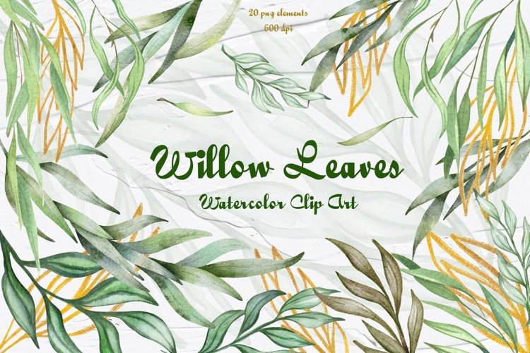 Eucalyptus Willow Watercolor Clipart example image 1
