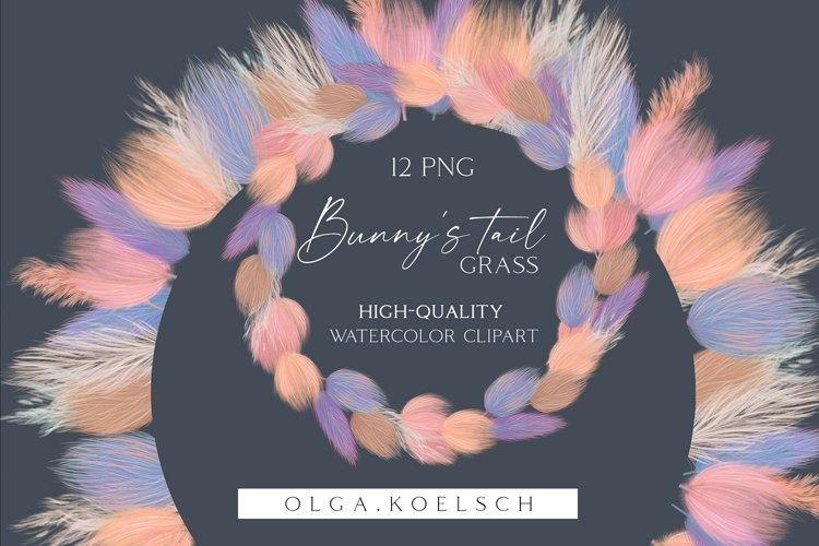 Pampas grass clipart, Dried bunny tail grass clip art 028