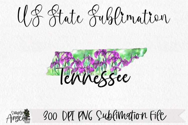 Watercolor US State Flowers - Tennessee example image 1