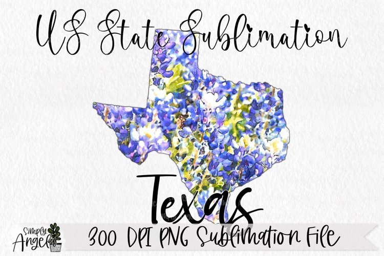 Watercolor US State Flowers - Texas example image 1