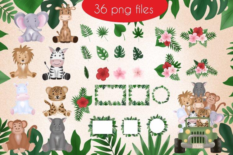 Safari animals Bundle 36 PNG files