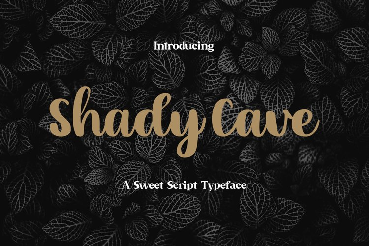 Shady Cave - Script Font example image 1