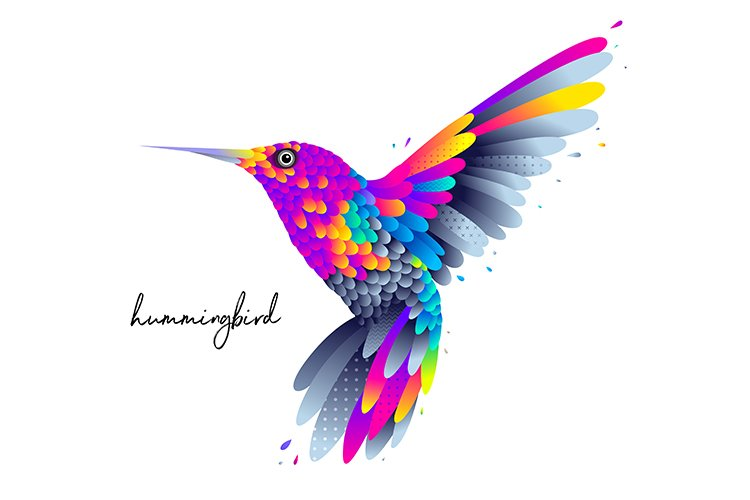 Colorful humming bird illustration example image 1