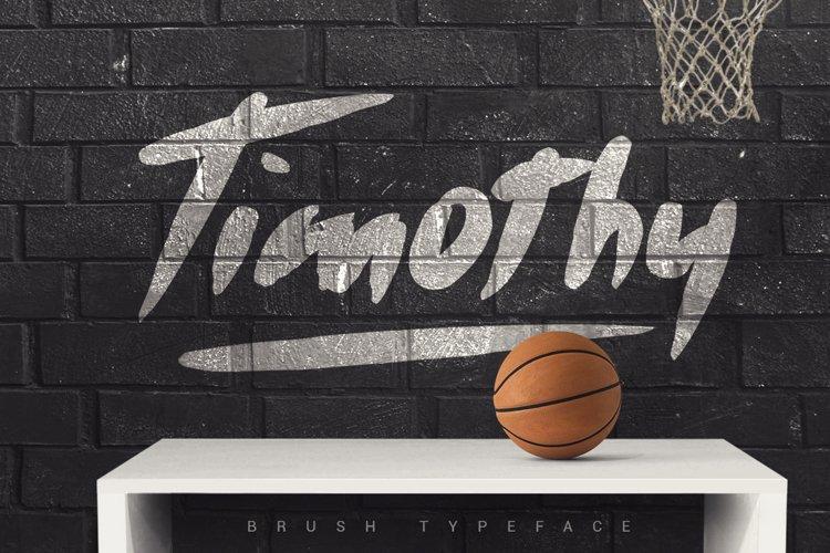 Timothy Brush Typeface example image 1