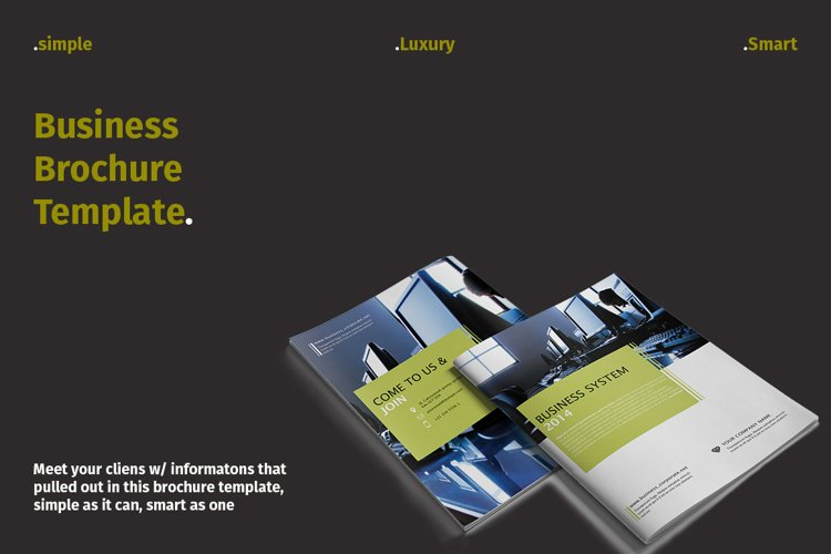 Business System Brochure example image 1