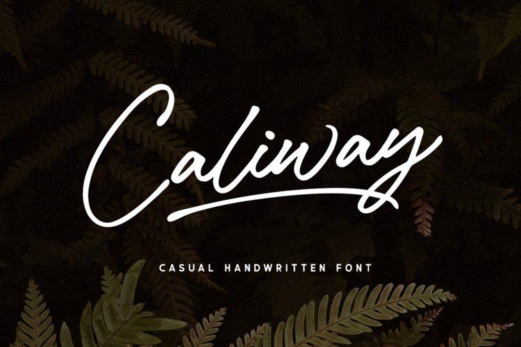 Caliway Script Font example image 1