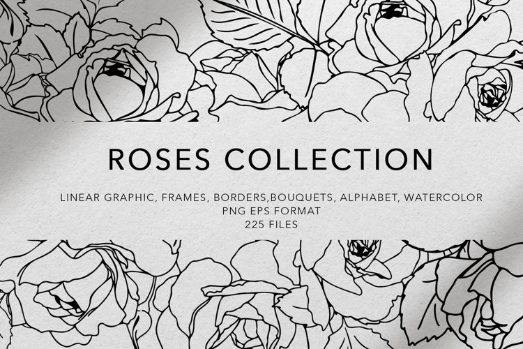 Rose line art collection