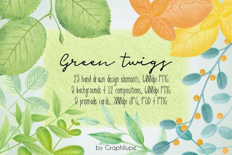 Green Twigs - Hand-drawn Illustration Kit
