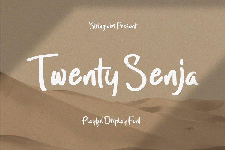 Twenty Senja - Playful Display Font example image 1