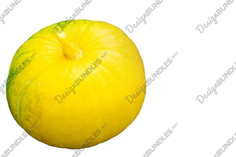 Pumpkin on a white background. Happy Halloween. example image 1