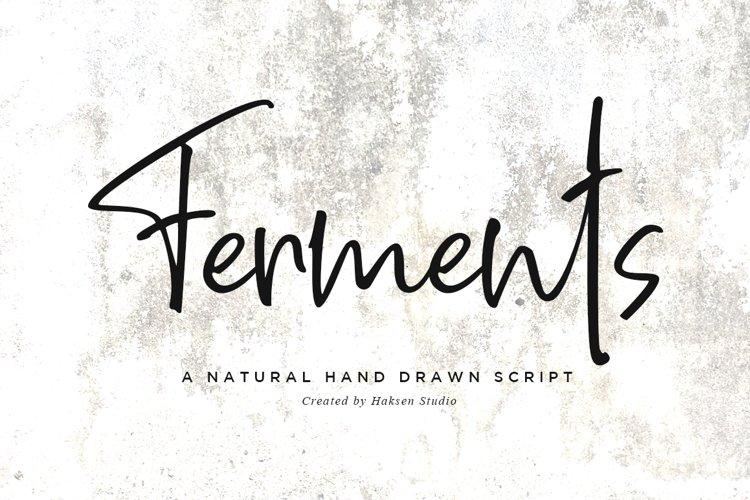 Ferments // Handwritten Scripts example image 1