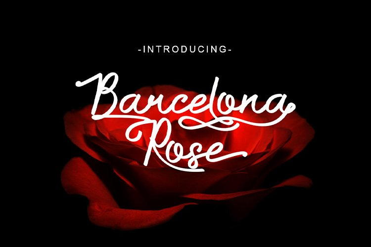 Barcelona Rose example image 1