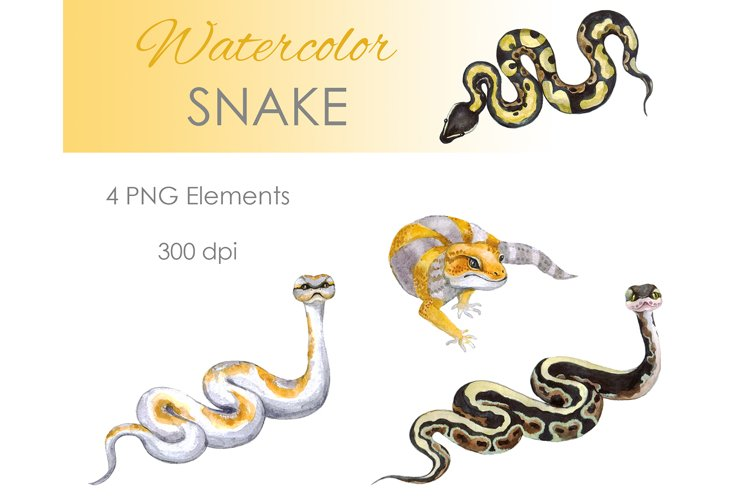 Watercolor Clipart. Snake Clipart. Snake and lizard example image 1