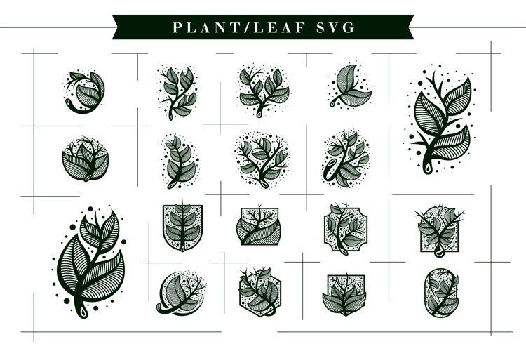 Plant Svg / Leaf Svg