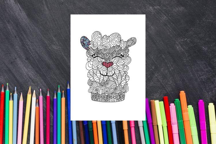 Alpaca Printable Colouring Page, Lama Animal Coloring Book