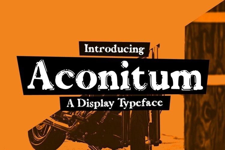 Web Font Aconitum example image 1