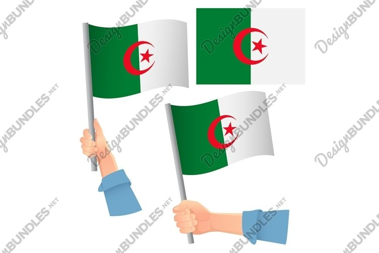 Algeria flag in hand example image 1