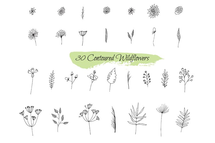 Collection sketches plants example image 1