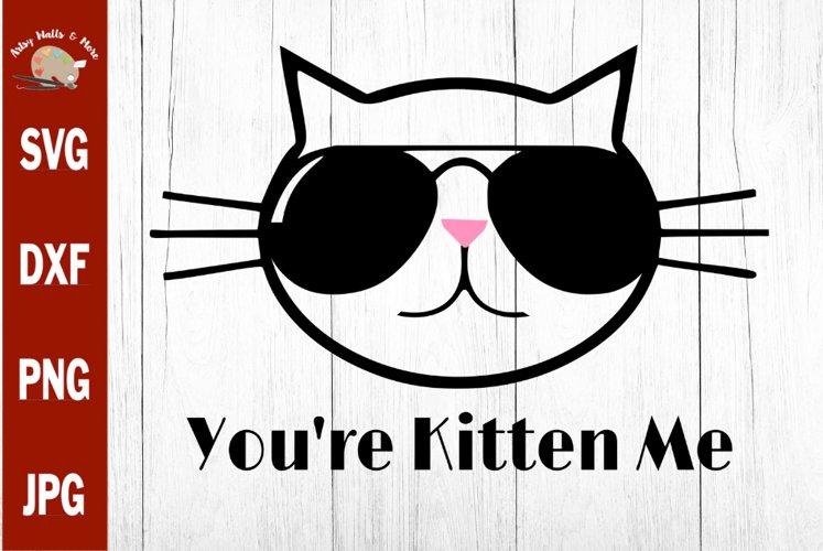 Youre Kitten Me Cat svg, funny cat Sunglasses svg cut file