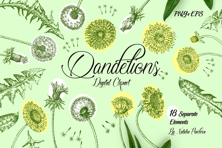 Dandelions Digital Clipart
