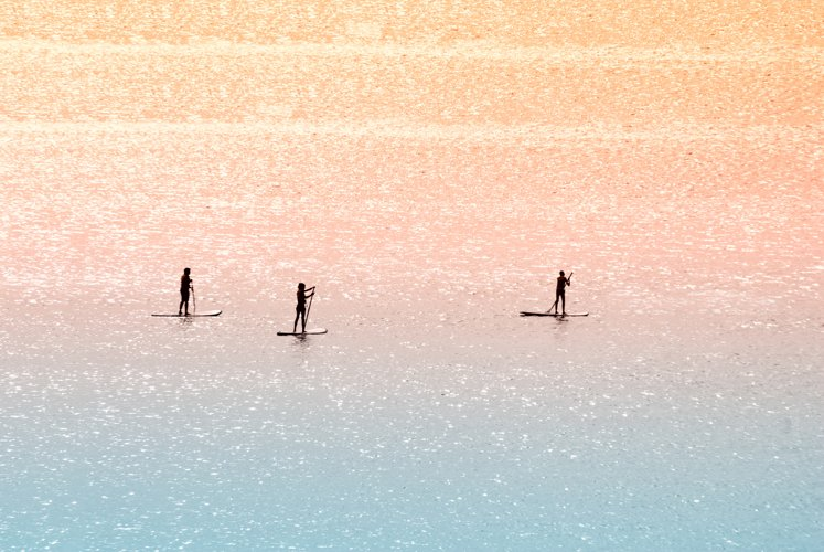 Standup paddle surfers