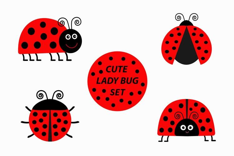 Ladybug Ladybird icon set. Vector illustration example image 1