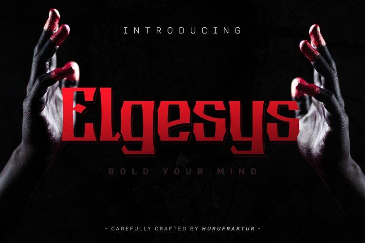 Elgesys example image 1