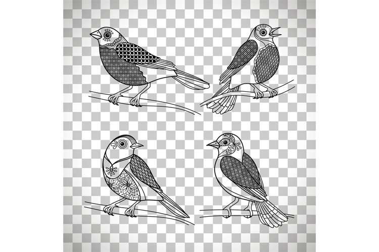 Birds with doodle decoration example image 1