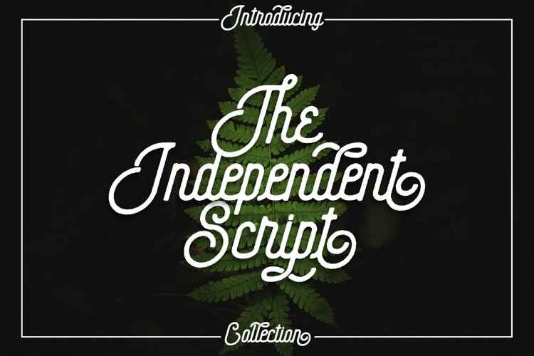 The Independent Collection example image 1