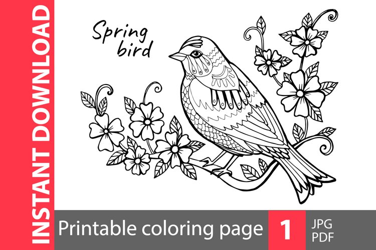 Spring bird coloring page example image 1