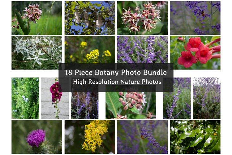 Botanical Photo Bundle, Large Nature Photos