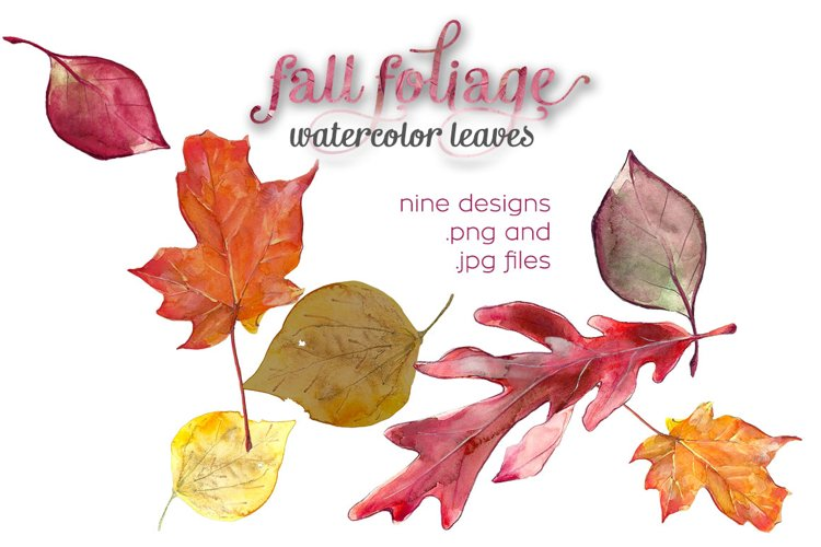 Fall Foliage Watercolor Illustrations example image 1