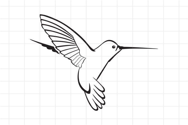Hummingbird SVG Cut File example image 1