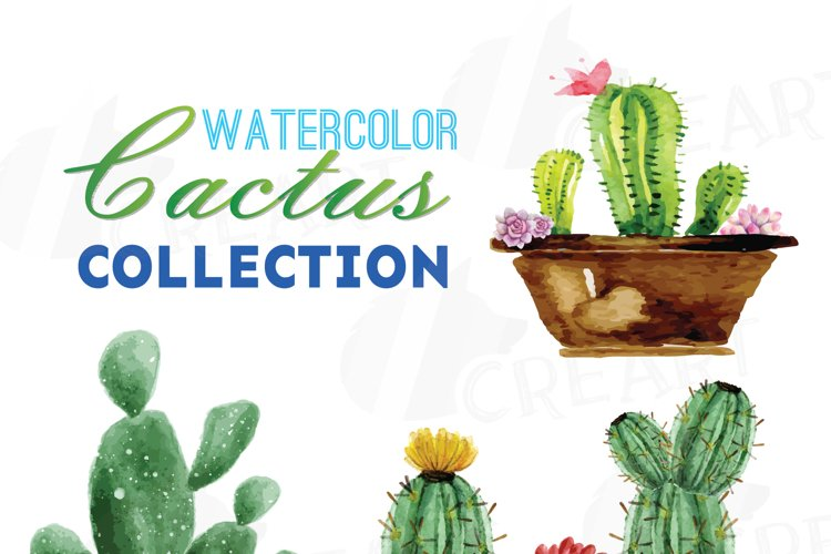 Watercolor cactus and watercolor succulent Clipart pack, Green cactus, Gallery wall cactus for print - Printable cactus wall art