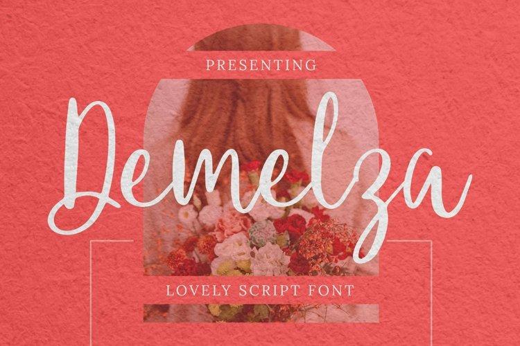 Web Font Demelza - Script Font example image 1