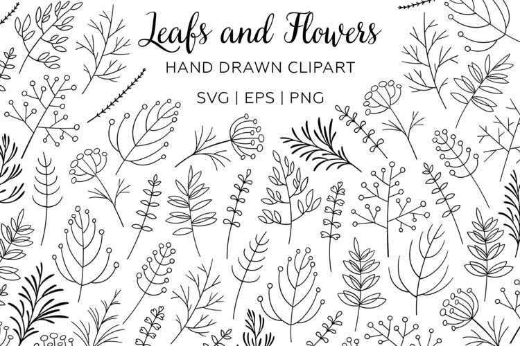 Leaf and Flower hand drawn clipart. Botanical