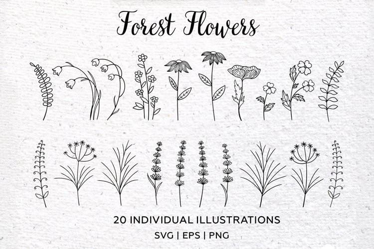 Botanical Forest Flower clipart. Wildflowers. PNG, SVG, EPS
