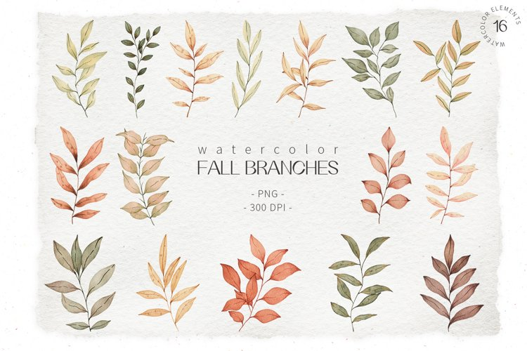 Watercolor fall leaves clipart. Hand drawn botanical clipart