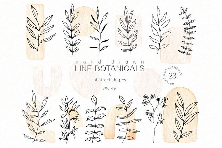 Botanical line leaf & watercolor shapes modern clipart